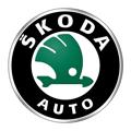 Ремонт DSG Skoda